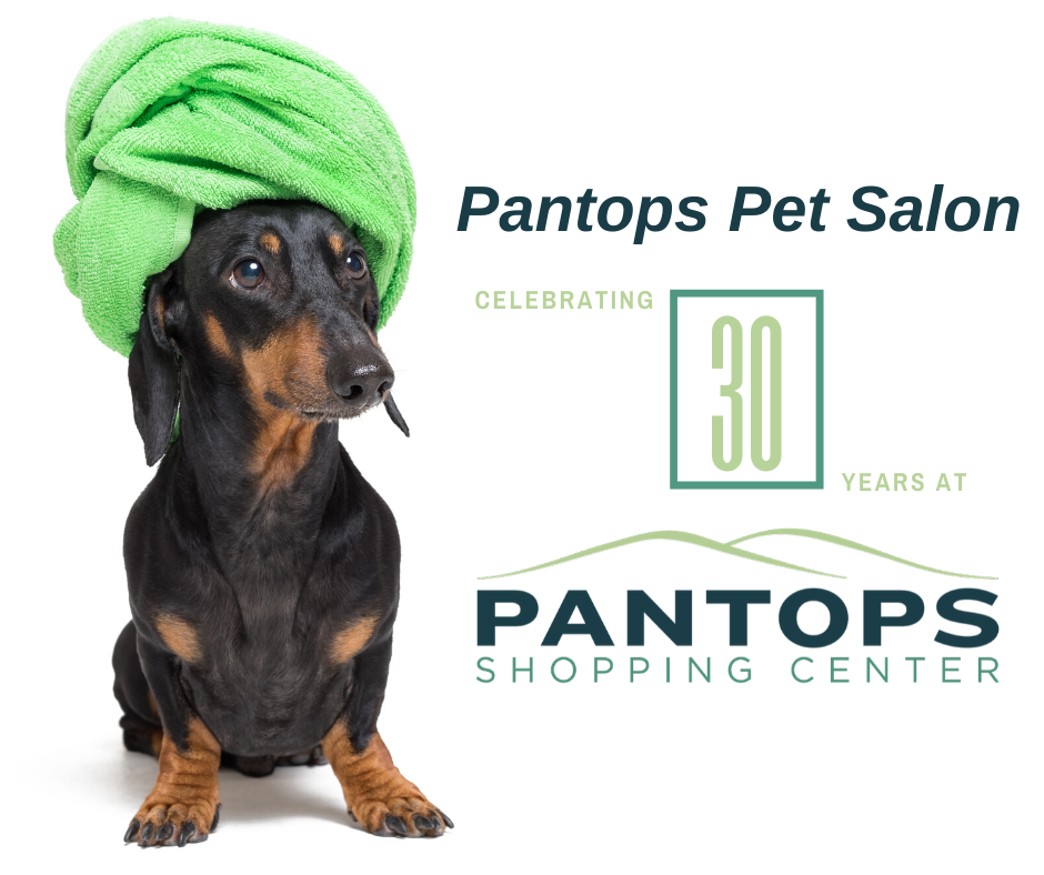 Pantops Pet Salon Celebrates 30 years